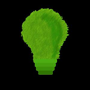 La reprise des boules de pétanque, une démarche saluée par le ministère de l'environnement